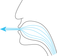 Bernoulli mouth
